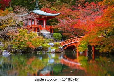 Beautiful japanese garden with colorful maple trees in autumn, Kyoto