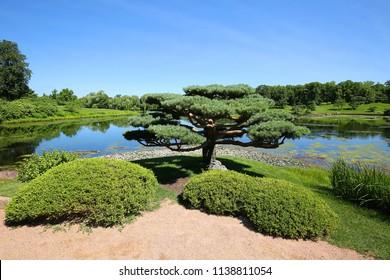 Beautiful Japanese gardens at the Chicago Botanical Gardens in Glencoe, Illinois, USA.