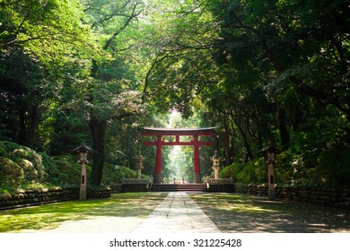 A beautiful Japanese temple gate in a park.