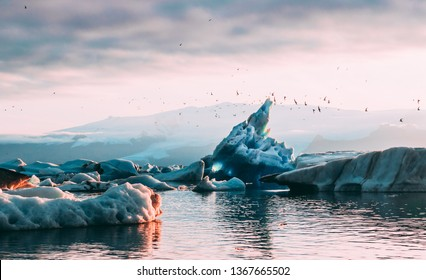 Beautiful Jokulsarlon glacial lagoon sunset sunrise blue icebergs floating  water reflection sky arctic tern birds flying and glacier on the background ice and fire Vatnajokull National Park Iceland