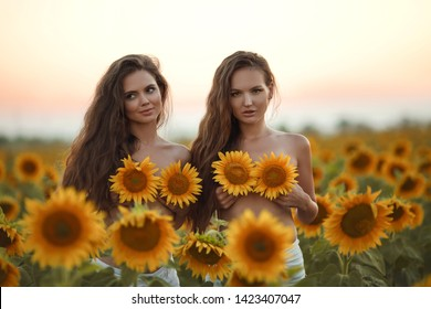Beautiful joyful two girls with long healthy hair holding sunflower in hands enjoying nature on summer blooming sunflowers field over sunset. Sunflare, sunbeams. Pretty brunette women portrait.