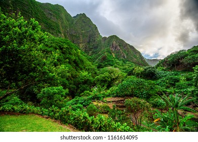 A beautiful jungle vista in Iao Valley State Park, tucked behind the city of Kahului on the island of Maui, Hawaii.