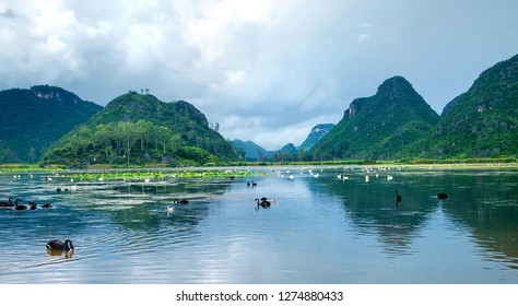 Beautiful karst landform, in China's yunnan puzhele scenic area