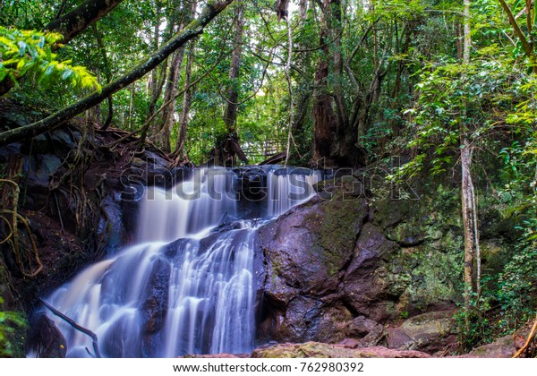 Beautiful Karura forest