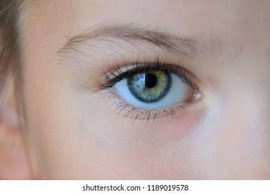 Beautiful kid green eye with long eyelashes