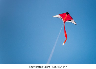 Beautiful kite in clear blue sky