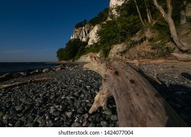 beautiful Møns Klint chalk coast by the Baltic Sea in Denmark