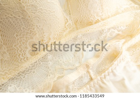 Beautiful Lace Lingerie Sexy Lace Underwear Stock Photo (Edit Now ... 4591d273b