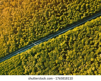 Beautiful ladscape photo from drone, top view of forest with asphalt road during sunset in a summer time.