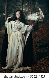 Beautiful lady of the forest with her owl .Fantasy and fairytale