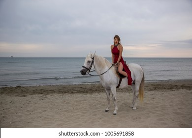 beautiful lady on the beach he loves horses, horse , Beach , sea, woman who loves horses , beautiful woman riding