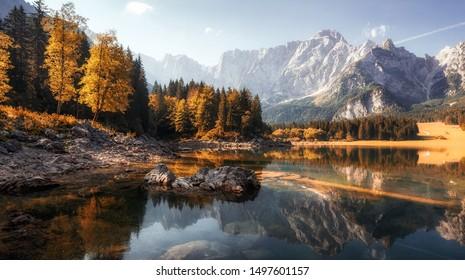Beautiful lake and forest during sunset landscape nature. Amazing nature landscape during sunset. Federa lake. Dolomites Alps. Italy.