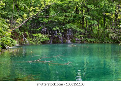 beautiful lake in forest of Plitvice Lakes National Park, Croatia