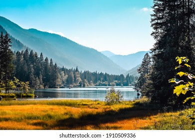 Beautiful Lake Hintersee near Ramsau, Germany surrounded by forested mountains forest and a colorful blooming lakeshore meadow.