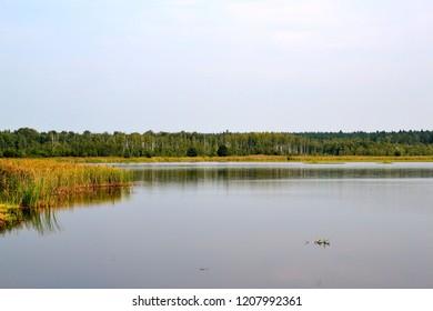 Beautiful lake landscape in Belovezhskaya Pushcha