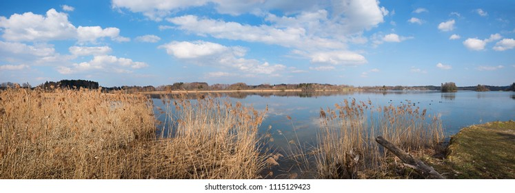 beautiful lake seeham nature preserve for birds and blue sky with clouds. upper bavaria landscape panorama