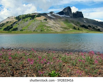 Beautiful lake shore in the mountains of British Columbia