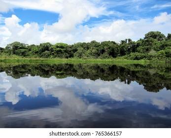Beautiful lake in tropical rainforest in Ecuador