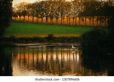Beautiful lake view at the sunset