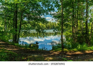 Beautiful lakeside view from a small lake in Sweden, with a small walk path along the lakeside, lush green trees, and sunlight - Shutterstock ID 1932876941