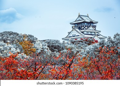 Beautiful landmark Osaka Castle in winter, Osaka City, Kansai, Japan.