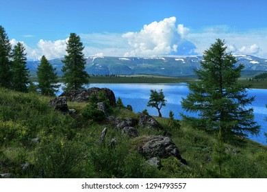 Beautiful landscape in the Altai Republic in Russia. View of the lake, mountains and trees on the rocky shore with green grass