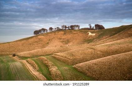 Beautiful landscape of ancient chalk white horse in hill at Cherhill in Wiltshire England during Autumn evening