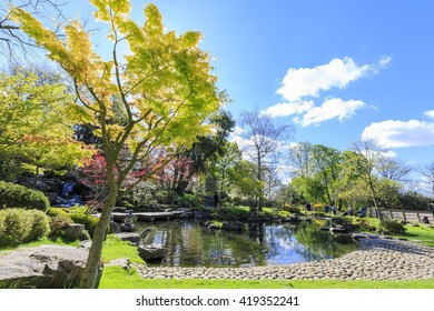 Beautiful landscape around Holland Park, London, United Kingdom