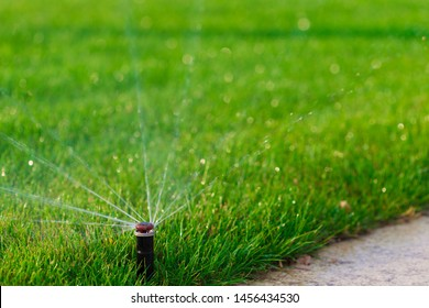 Beautiful landscape with automatic  sprinkler. Spraying  watering the lawn in the home garden with a water drops.