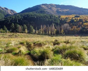 Beautiful landscape in autumn