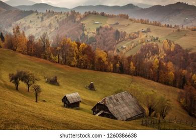 Beautiful landscape in autumn season with amazing colors. Simon, Brasov. Tansylvania - Romania.