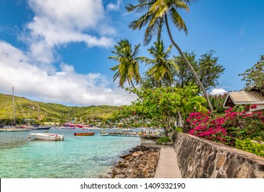 Beautiful landscape of Bequia with palm trees along the waterfront.