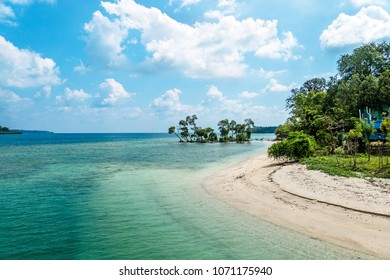 Beautiful landscape of blue sky sea sand and white waves on the beach during summer at Koh. trees in the water white sand on the beach. Havelock island Andaman and Nicobar Islands India