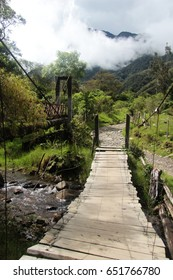 Beautiful landscape with a bridge on the trekking way in Cocora valley, Salento, Colombia.