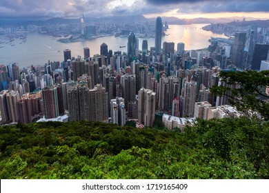 Beautiful Landscape and Building Cityscape of Victoria Peak Habor, Hong Kong Island, China. Famous Landmark Scenic Spot View. Forest Foreground