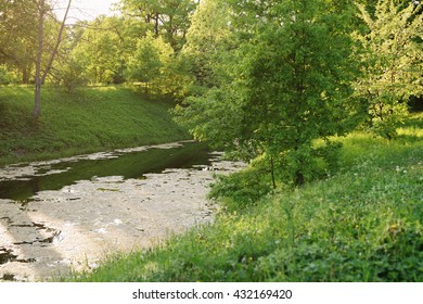 beautiful landscape in contrast of blooming water in late spring, water pollution