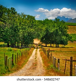 Beautiful landscape with country road in South Africa, square image
