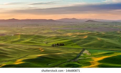 Beautiful landscape of crop field in Palouse in the morning