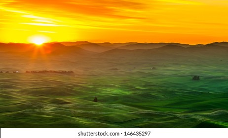 Beautiful landscape of crop fields in the Palouse region of eastern Washington, USA at sunrise
