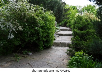 Beautiful landscape design, garden path with staircase in stone tiles, evergreen bushes, fir trees, blue spruces and shrubs in sunlight. Modern landscaping.