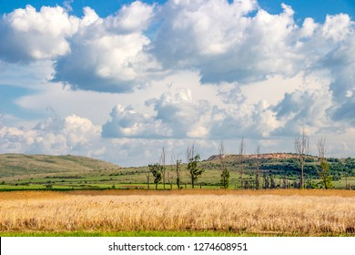 Beautiful landscape with Dragoman natural karst Marsh in Sofia Province, Bulgaria - the biggest Bulgarian natural karst wetland, covered with clouds beautiful May sky