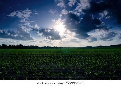 Beautiful landscape and dramatic clouds  - Shutterstock ID 1993254581