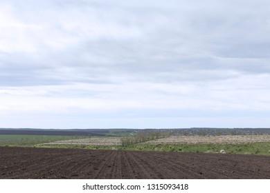 Beautiful landscape. Empty plough land field against the blue sky.