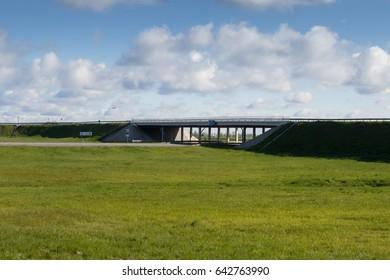 Beautiful landscape field, car bridge, green trees and blue sky