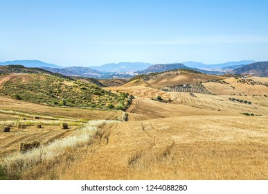 Beautiful landscape with fields near Malaga, Andalusia, Spain.