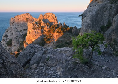 Beautiful landscape with the first rays of the sun. Cape in the seaside resort. Crimea