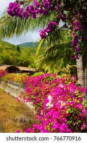 beautiful landscape with flowers