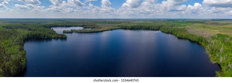 Beautiful landscape with a forest lake. Aerial photography