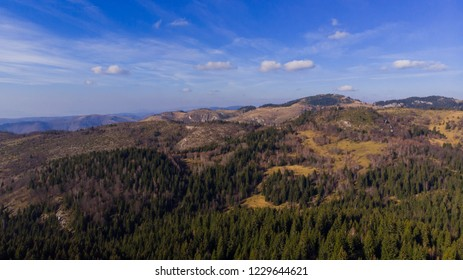 Beautiful landscape of forest and mountaints