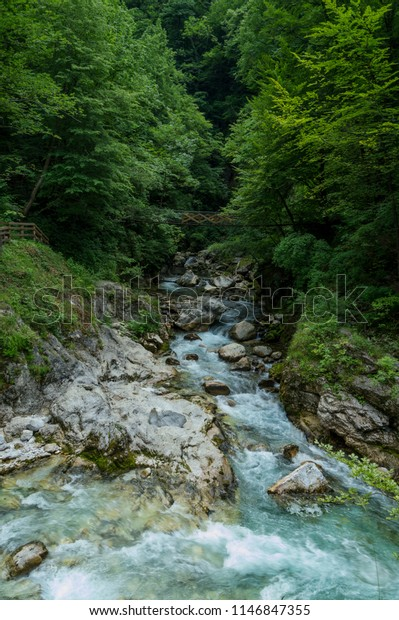 Beautiful Landscape Forest River Flowing Among Stock Photo